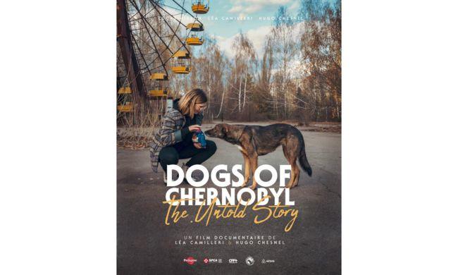 les chiens de Tchernobyl